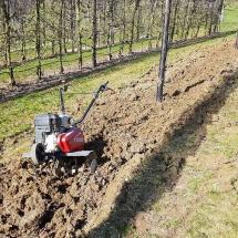 Bodenbearbeitung Neupflanzung